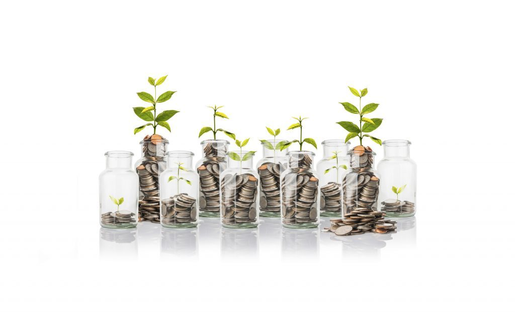 Wealth planning - green shoots of growth emerging from money jars illustrating how Copia Wealth and Tax can help you grow your wealth and plan for your retirement and prepare an exit strategy
